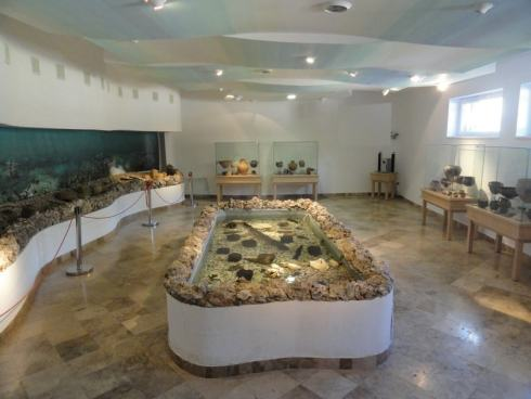 Artifacts and representation of the bottom of Ohrid lake in Bay of Bones museum