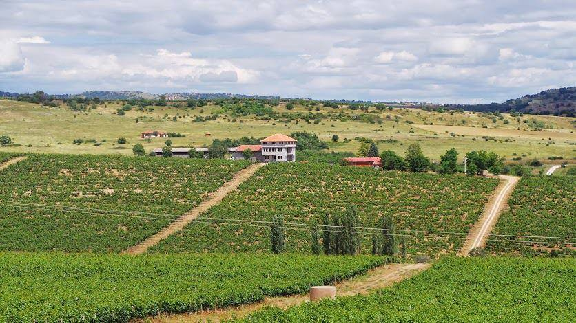 Chateau Sopot winery with its fields, Veles region, Macedonia